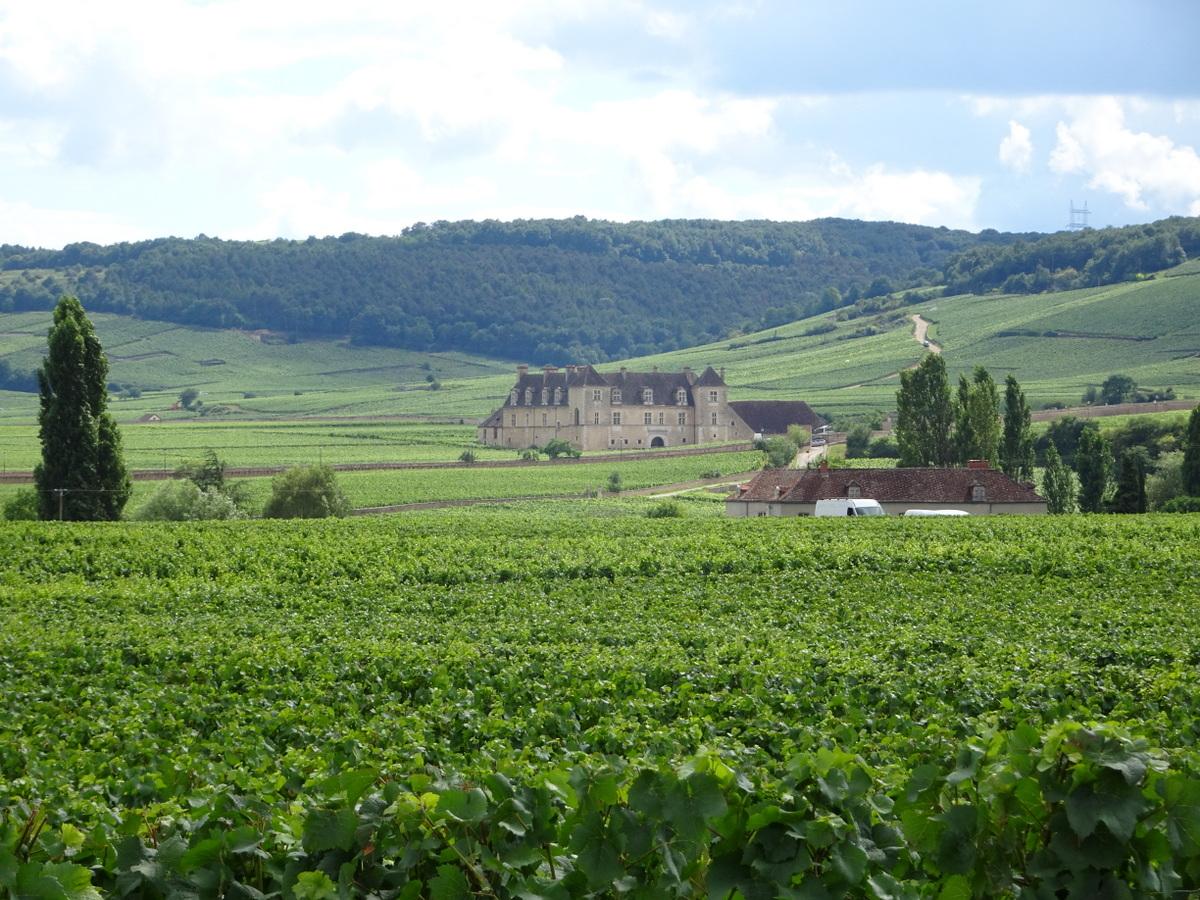 Château du Clos de Vougeot_JMM_Much